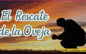 El Rescate de la Oveja | Reflexiones Cristianas